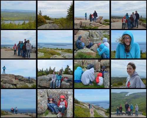 Acadia 1 Collage