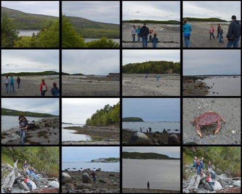 Acadia 3 Collage