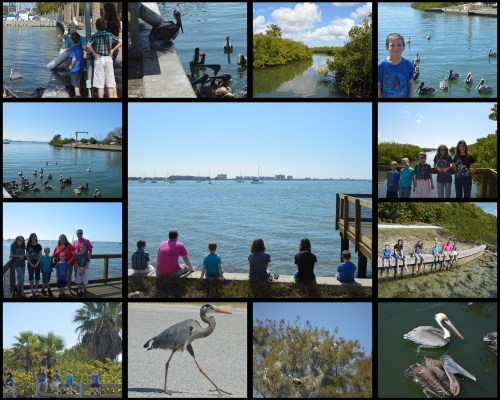 Gulfport Collage