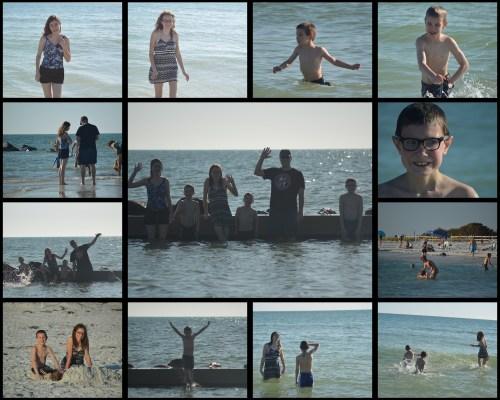 Honeymoon Island Collage