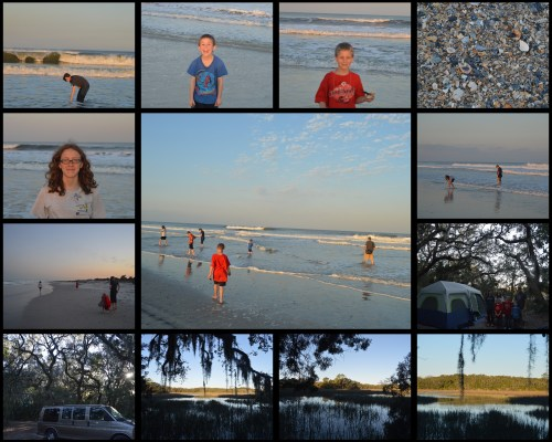 Little Talbot Island Collage