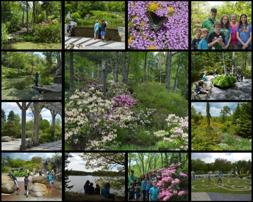 Maine Botanical Gardens Collage