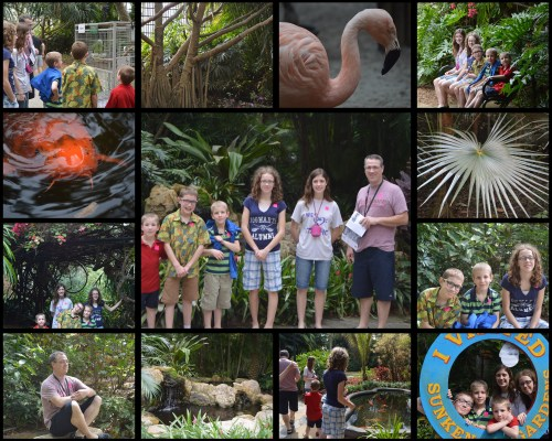 Sunken Gardens Collage